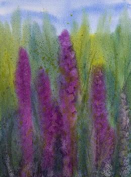 Purple Loosestrife by Debbie Homewood