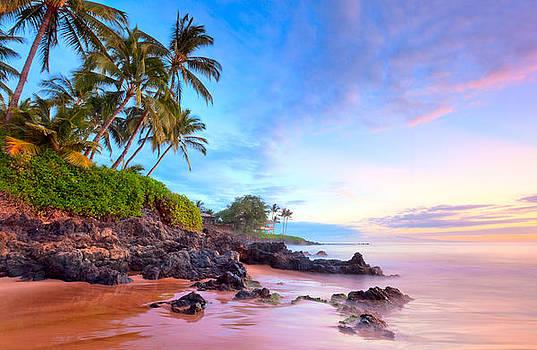 Purple Sea by Michael Sweet