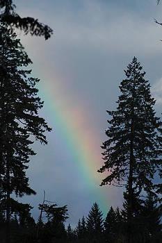 Rainbow by Wanda Jesfield
