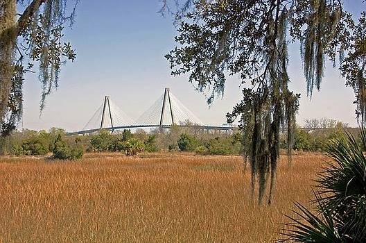 Ravenel Bridge One by Donnie Smith