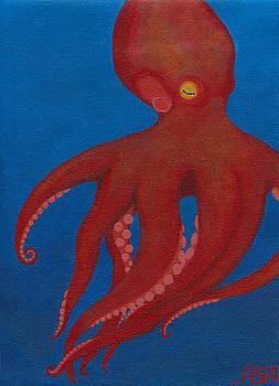 Red Octopus by Amanda Adams