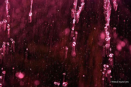 Red Rain by Walt Jackson