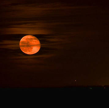 Red Sky At Night by Joetta West