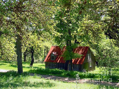 Red Tin Roof by Joy Tudor