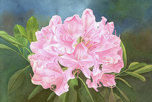 Rhododendron by Leona Jones