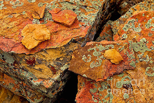 Rock Abstract I by Barbara Schultheis