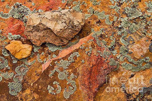 Rock Abstract III by Barbara Schultheis