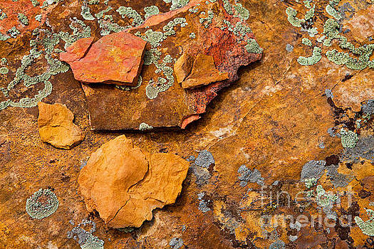 Rock Abstract V by Barbara Schultheis