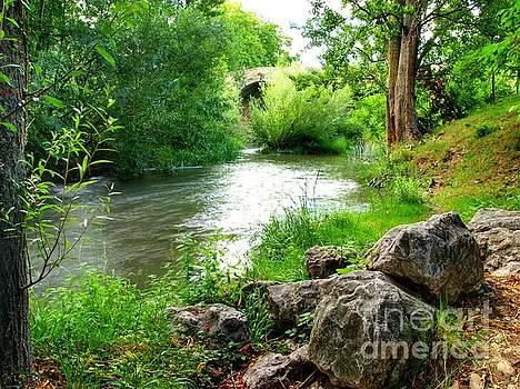 Rocks by the Stream by Alfredo Rodriguez