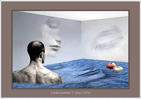 Room by Zoldes Hampel Sandor