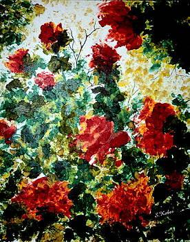 Rose Garden by Susan Kubes