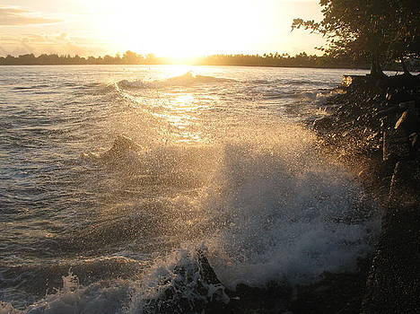 Roughwater Morning by Ron Holiday Broomell