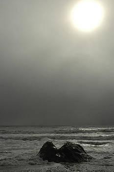 Ruby Beach Fog by Wanda Jesfield