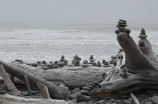 Ruby Beach Rocks by Wanda Jesfield