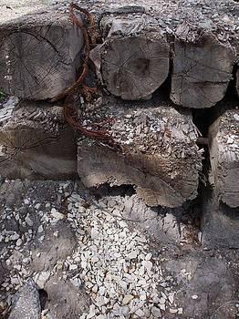 Rust Lumber and Gravel by Anna Villarreal Garbis