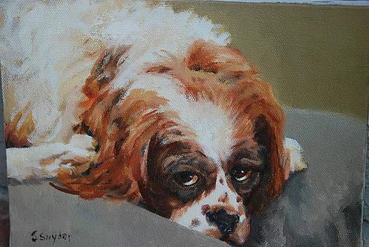 Rusty by Joyce Snyder