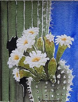 Saguaro Bloom by Regina Ammerman