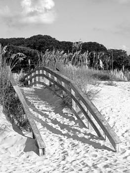 Sand Bridge by Bob Nemens
