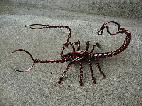 Scorpion by Scott Faucett