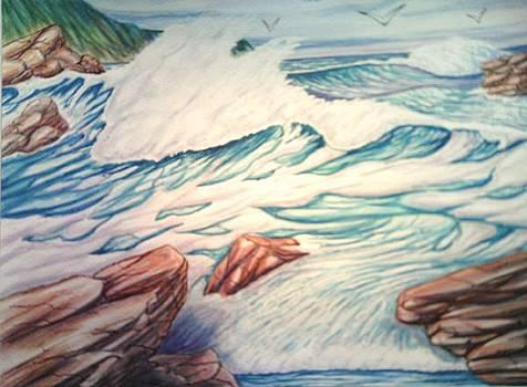 Seagulls Above The Surf by Lynwood Pollard