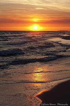 Seaside Serenade I by Charles Warren