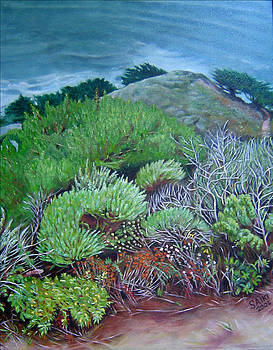 Secret Garden - Big Sur by Lorna Saiki