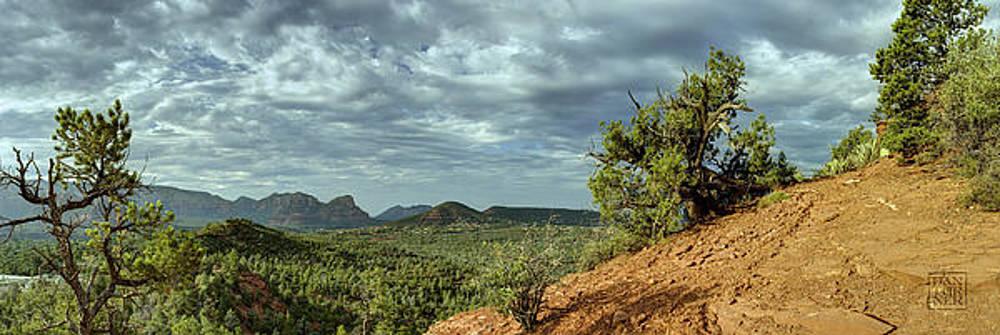 Sedona From the Top of Jordan Trail by Dan Turner