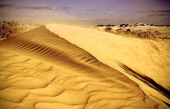 Shifting Sands by Heather Thorning