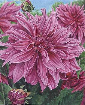 Silent Explosion of the Dahlia by Collin Edler