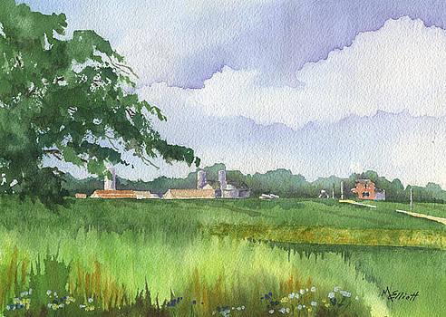 Sink's Farm by Marsha Elliott