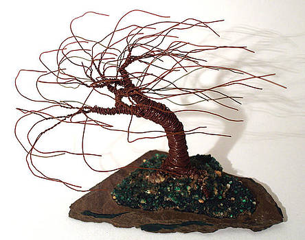 Slated Wind Swept - Tree Sculpture by Sal Villano