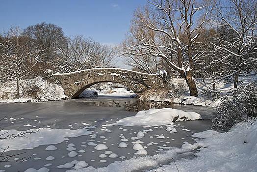 Snow on Pond by Andrew Kazmierski