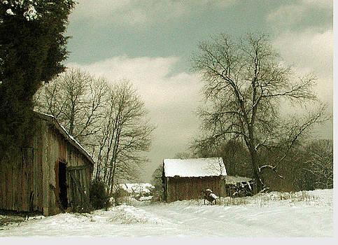 Snowy Day by Marilyn Marchant