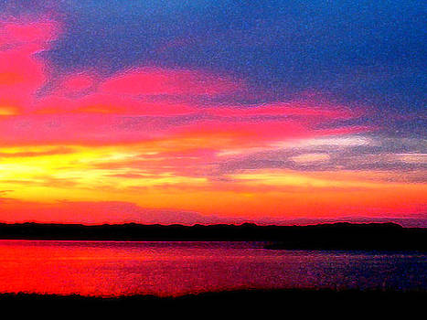 South Carolina Sunset by Tracy Daniels