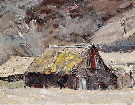 Southwest Art Barn by Joyce Snyder