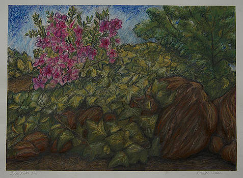Spring Rocks by Rebecca Moore