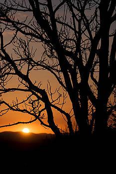 Spring Sunset by John Soffe