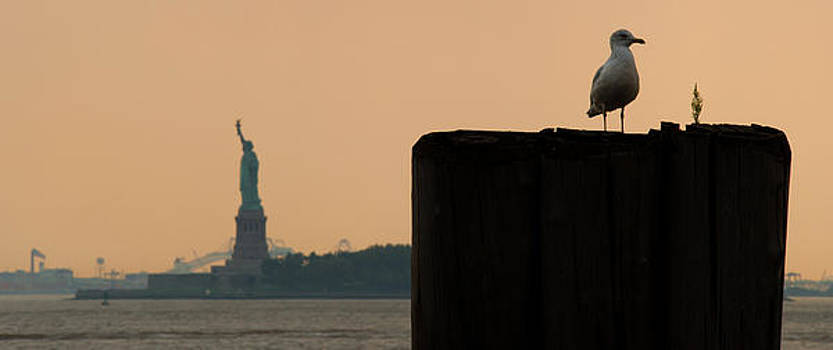 Statue Of Liberty by Peter Verdnik