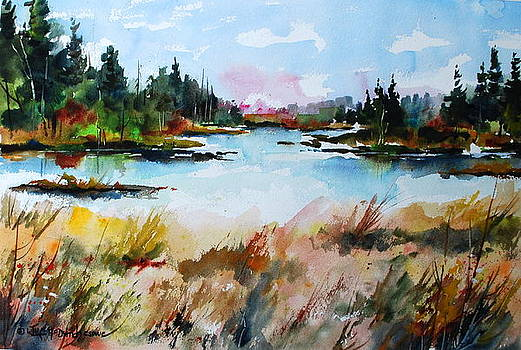 Still Waters at Blueberry Island by Wilfred McOstrich