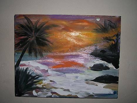 Sun Set Takes Over by Lisa Stunda