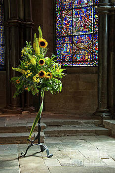 Sunflowers Canterbury Cathedral by Donald Davis