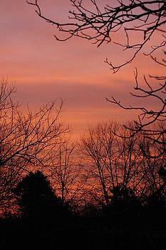 Sunrise 2 by Paul Thomley
