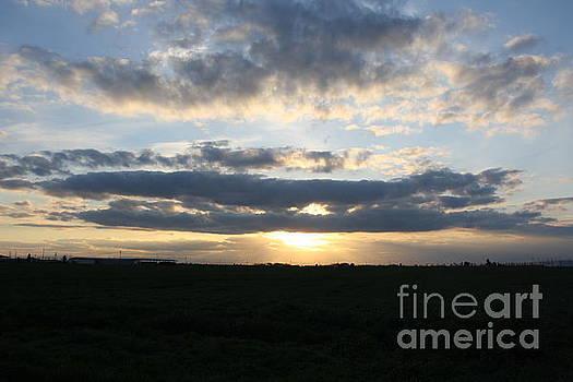 Sunset II by Lea Cypert