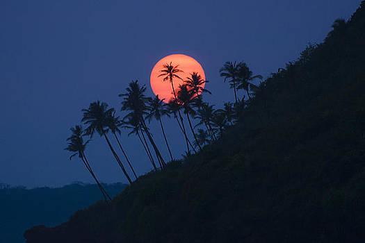 Sunset In Goa by Sydney Alvares