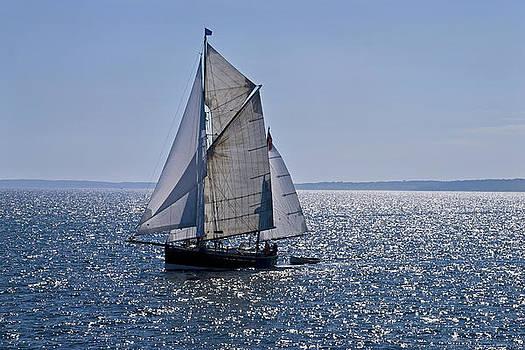 Sunshine Sailboat by Andrew Kazmierski