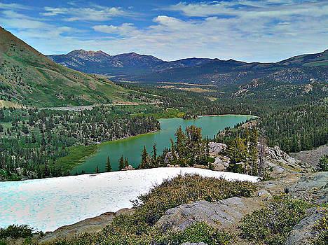 Tahoe's Nature by Brad Scott