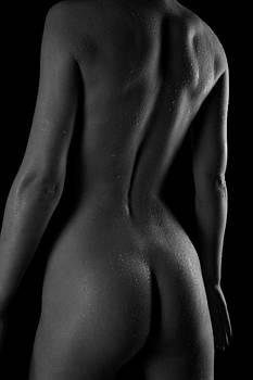 The Back by Stuart Thomson