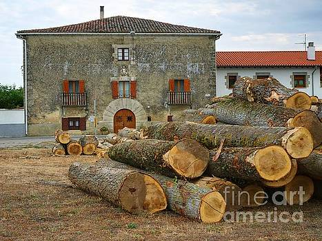 The Logs and the House by Alfredo Rodriguez