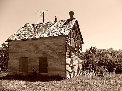 The Old Home Stead by Ashley Vipond