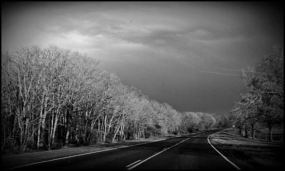 The Road to Anywhere by Shelia Bull